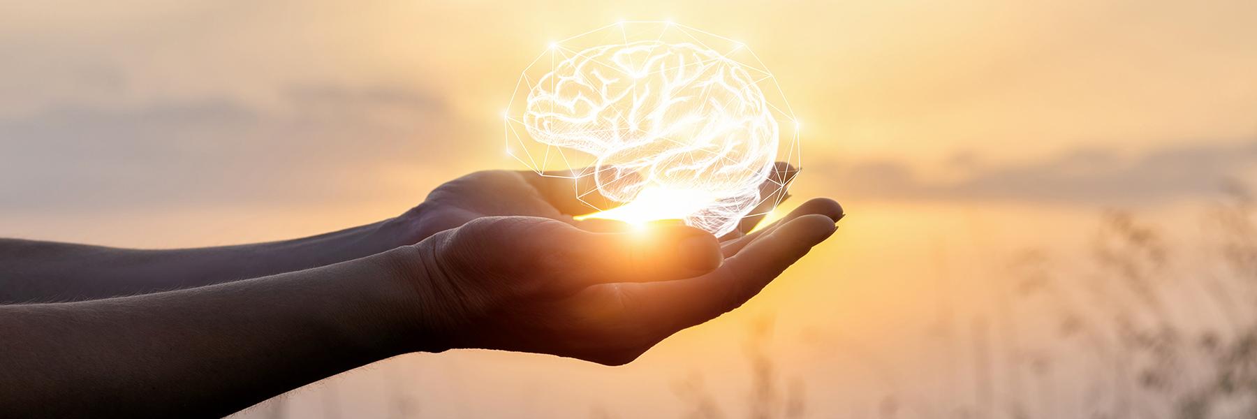 Brain Injury Information | Resources | Ontario Brain Injury Association
