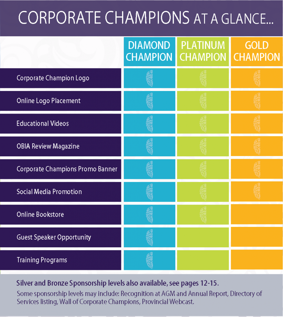 Corporate Champions at a Glance